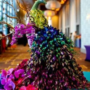 Peacock in Orchids Flowers